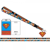 Lanayrd Dc Comics Superman