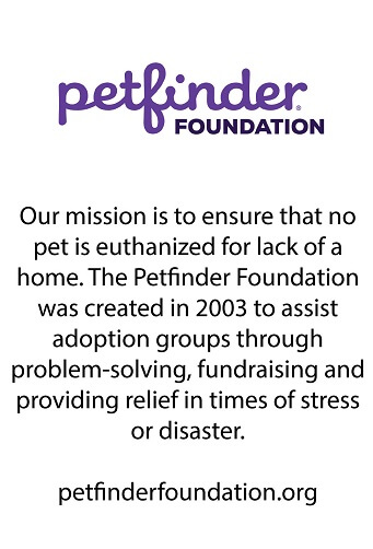 Petfinder Foundation